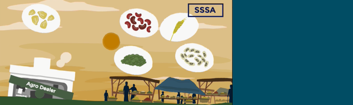 New Video: What is Seed Security?
